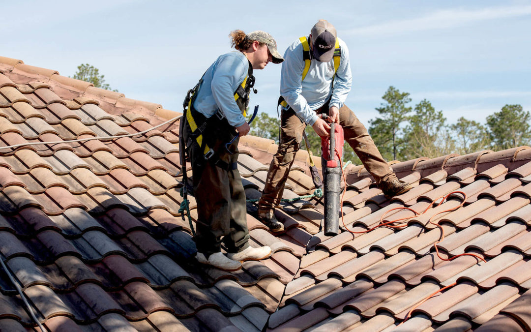 Roof cleaning to reduce fire risk